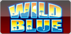 Quick Hit Wild Blue Free Games Fever Logo
